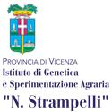 ISTITUTO STRAMPELLI